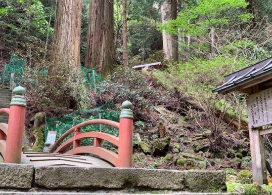 室生寺の無料駐車場とアクセス 室生山上公園芸術や龍穴神社など周辺は?